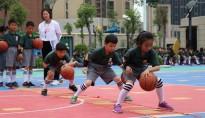 少儿 篮球运动